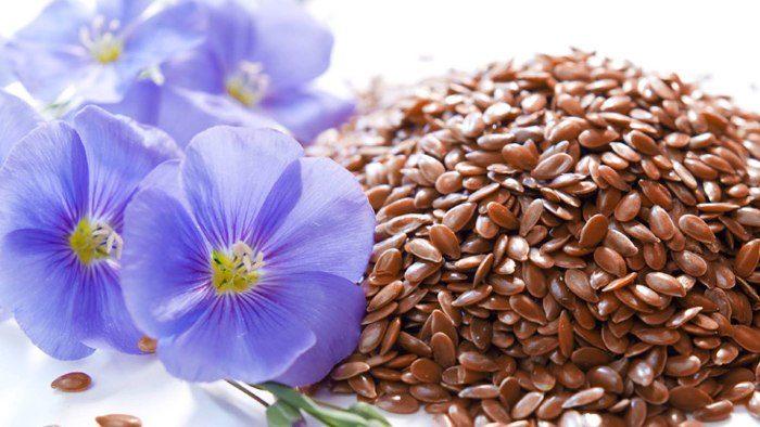 семена льна от паразитов как принимать отзывы