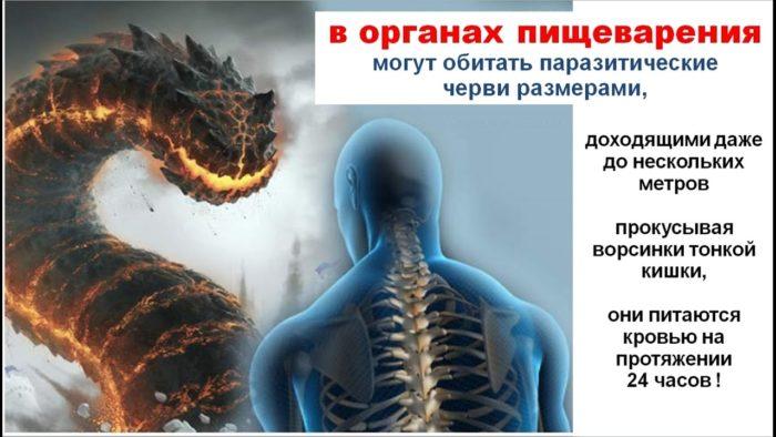 профилактика паразитов у человека лекарства отзывы