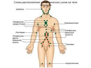 паразиты во рту человека фото