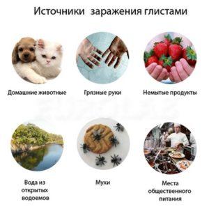Круглые черви у человека: признаки, профилактика, виды