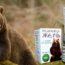 Медвежья желчь и паразиты